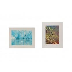 Lote 14: Dos serigrafías